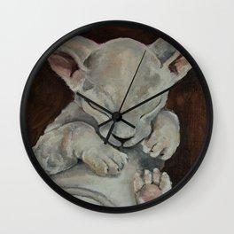 Oilpainting animal kitten sphinx Wall Clock