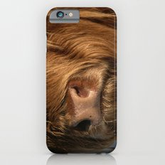 NOSEY HIGHLAND COW iPhone 6 Slim Case
