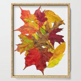 Autumn Fall Leaves Foliage Art Serving Tray