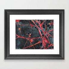 PLURIPOTENT (EMBRYONIC) STEM CELLS Framed Art Print