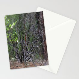 Life from within Mother Earth.... Stationery Cards