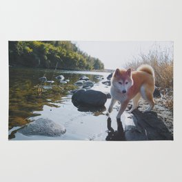 Shiba Inu At The River Rug