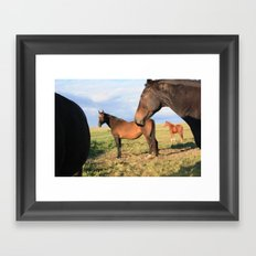 Cowboica 2 Framed Art Print