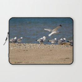 Landing | Seagull Photography Laptop Sleeve
