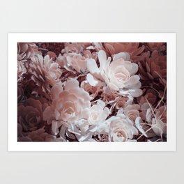 Infrared Succulents #1 Art Print