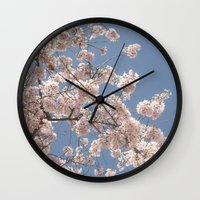 cherry blossoms Wall Clocks featuring  Cherry Blossoms  by cescabear