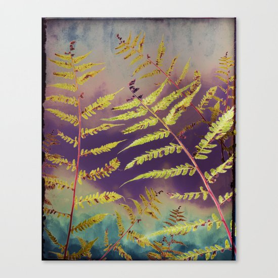 Faded Bracken Canvas Print