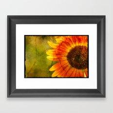 Red Sunflower Framed Art Print