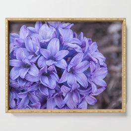 Purple Perfume Serving Tray