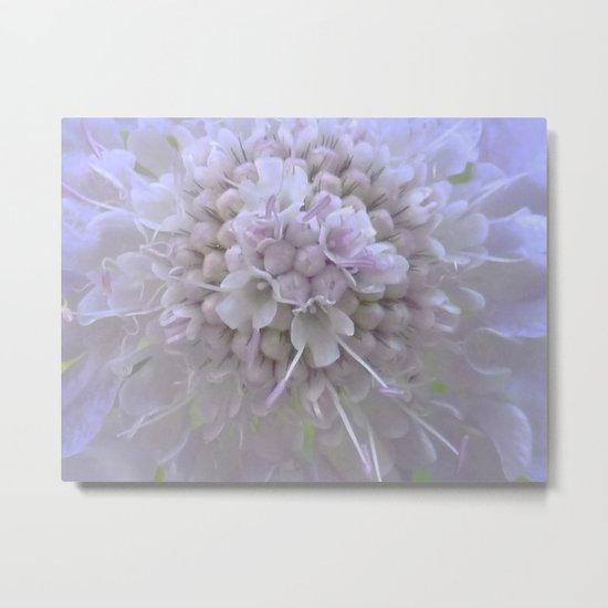 Une Fleur parmi les Fleurs Metal Print