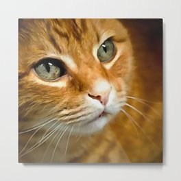 Adorable Ginger Tabby Cat Posing Metal Print