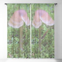 Split Fungi Sheer Curtain