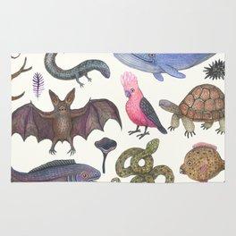 Animal Kingdom Rug