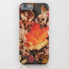 crimson leaves iPhone 6s Slim Case