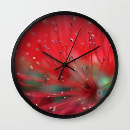Callistemon macro 2413 Wall Clock