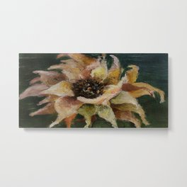 Beautiful flower, nature, physalis Metal Print