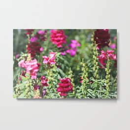 Garden of Whimsy Metal Print