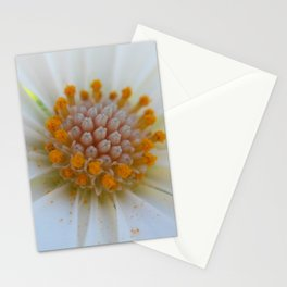 Macro Flower 22 Stationery Cards