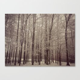 Indiana Winter Canvas Print