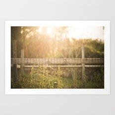 Sunny Garden Fence Art Print