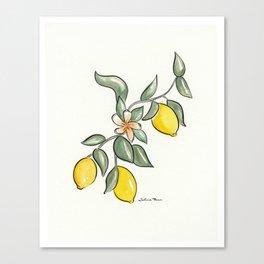 Lemon Branch Canvas Print