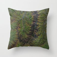 Blue Ridge Mountains North Carolina North America Throw Pillow
