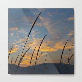 Sunset lover Metal Print