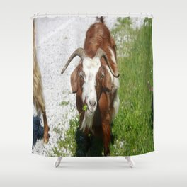 Whimsical Portrait of a Horned Goat Grazing Shower Curtain