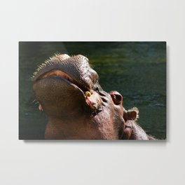 Happy Hipo Metal Print