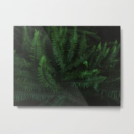 Oregon Fern x Forest Floor Metal Print