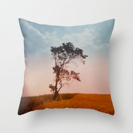 einsamkeit Throw Pillow