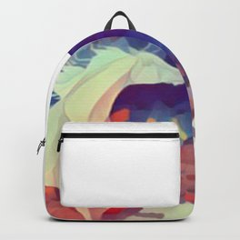 Prism Shadow Backpack