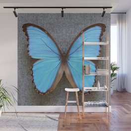 Blue Morpho Butterfly on Grey Wall Mural