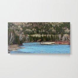 Sparkling River in Spring Metal Print