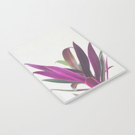Boat Lily Notebook