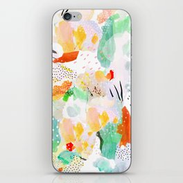 toto: abstract painting iPhone Skin