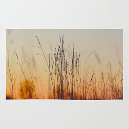 Ambient Colorful Red Orange Sunset With Wheat Silhouette Rug