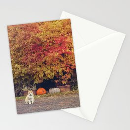 Autumn Cat Stationery Cards