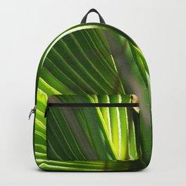 Saw Palmetto Closeup Backpack