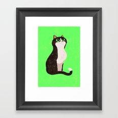 A cat just because Framed Art Print