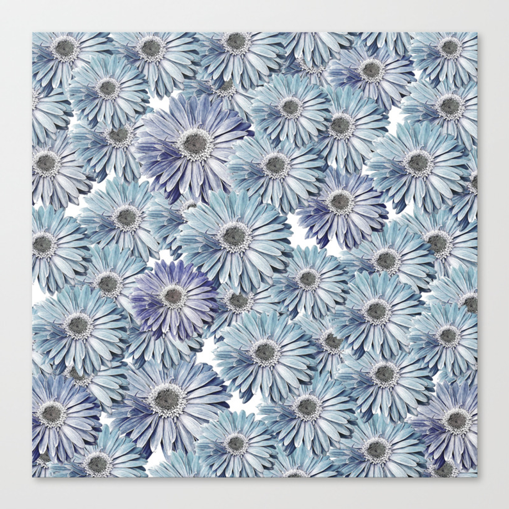 Bed Of Daisies Canvas Art by Inourgarden CNV9065301