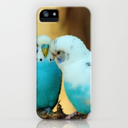 Lovely Pair Of Budgies iPhone Case