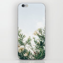 Neutral Spring Tones iPhone Skin