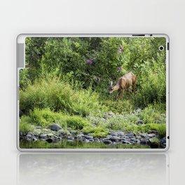 Young Doe Among the Flora, No. 2 Laptop & iPad Skin