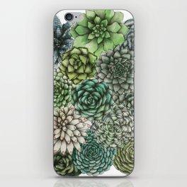 An Assortment of Succulents iPhone Skin
