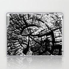 Texture Tree Rings Tree slice Old Tree photograph Natural beauty Laptop & iPad Skin