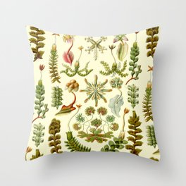 Ernst Haeckel - Hepaticae Throw Pillow