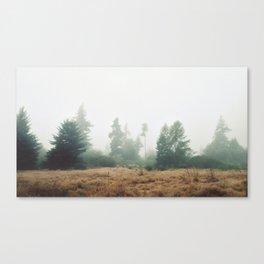 First Glance Canvas Print