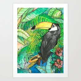 Toucan with mamão, Viva la Vida Art Print