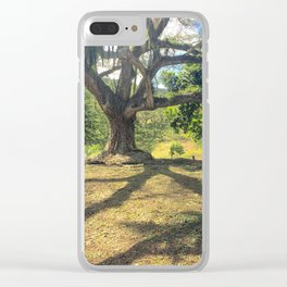 Tire Swing in a Tropical Place Clear iPhone Case